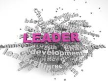 the ceo magazine, leadership development,
